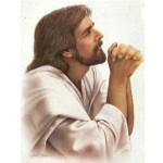 JESUS HERMOSO
